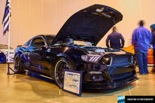 HIN 2017 Houston TX HoustonIS Photography PAS 13